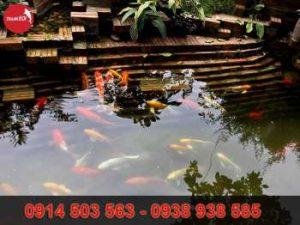 Hồ cá koi chuẩn Nhật Bản đẹp tại non bộ Thanh Sơn